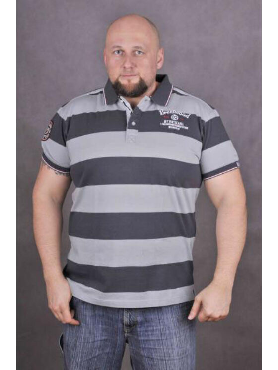 TwinLife Férfi szürke pólók